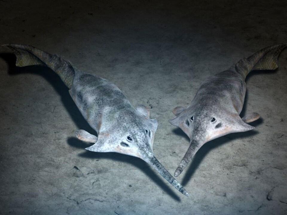 Représentation artistique d'un poisson qui vivait il y a 410 millions d'années.