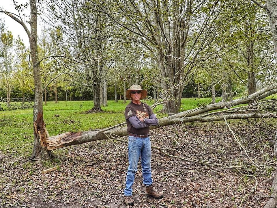 Un homme portant un chapeau et des lunettes devant un arbre cassé.