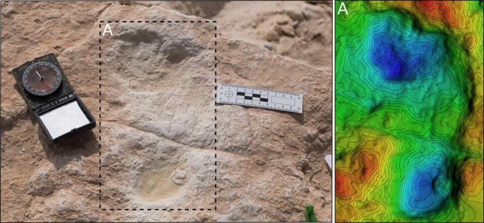 La première empreinte humaine découverte à Alathar et son modèle numérique d'élévation (MNE) correspondant.