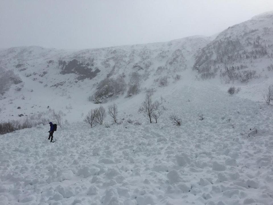 Avalanche de neige mouillée