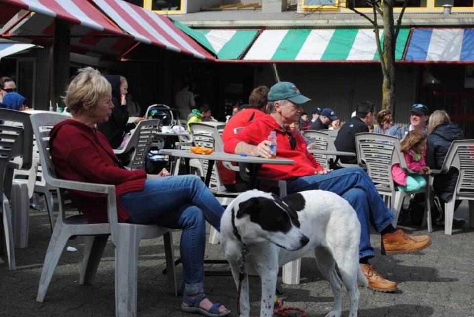 Un couple femme-homme accompagné d'un chien est assis sur une terrasse et regarde devant.