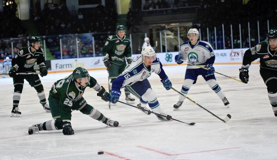 Six joueurs en blanc et en vert combattent pour la rondelle.