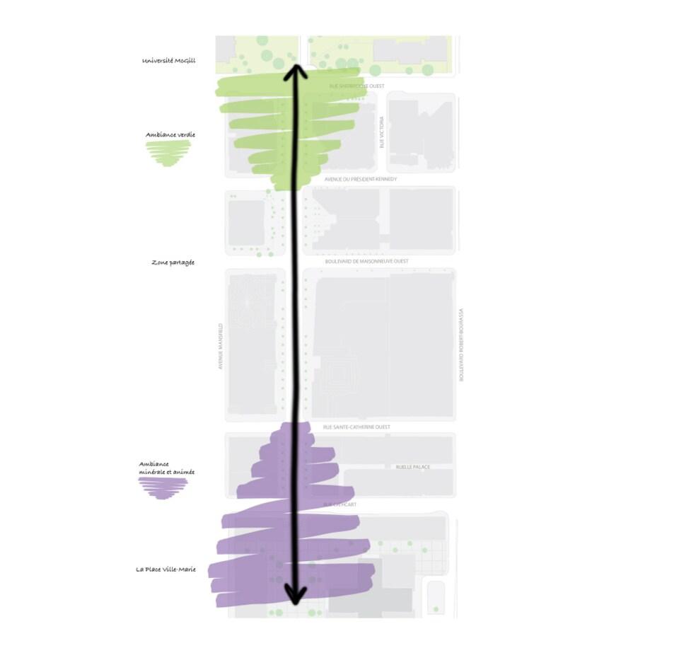 Une carte avec, du nord au sud : l'Université McGill; une ambiance verdie; une zone partagée; une ambiance minérale et animée; et la Place Ville-Marie.