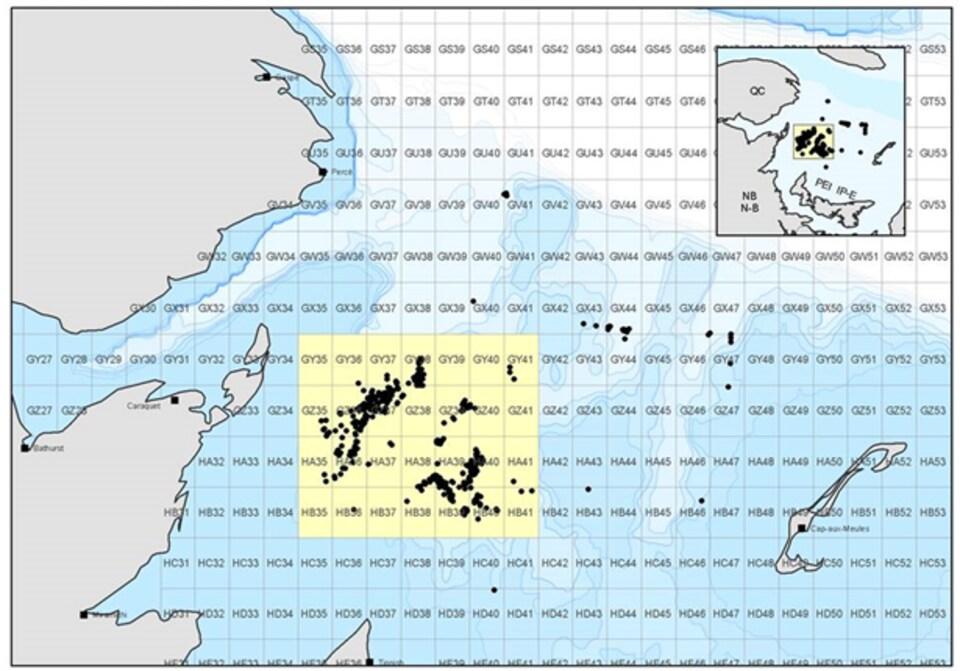 Pêches et Océans a imposé la fermeture de la zone statique à partir du 28 avril 2018 aux pêcheurs de crabe des neiges. La superficie de cette zone est de 14 000 km². Cette mesure a été prise pour protéger la baleine noire.
