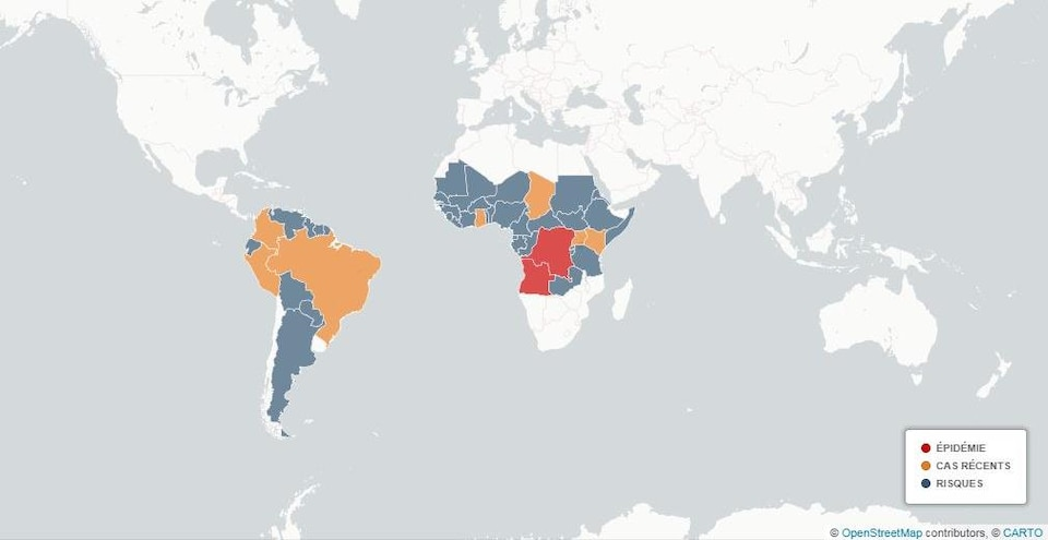 Carte de la fièvre jaune dans le monde