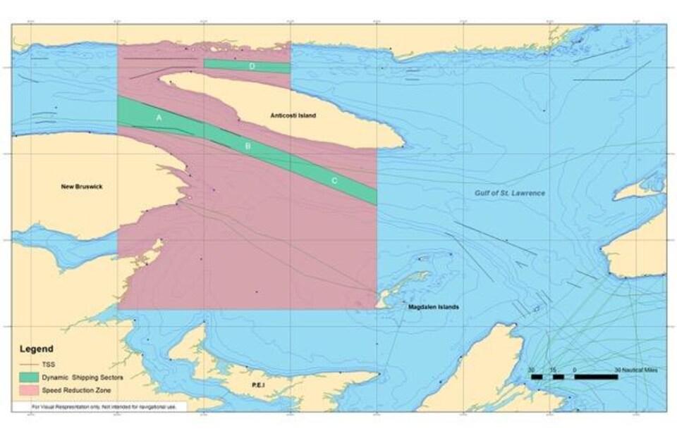 Transports Canada a désigné deux voies de navigation dans le golfe du Saint-Laurent où les navires n'ont pas à ralentir à moins que la présence d'une baleine noire de l'Atlantique Nord ne soit signalée.