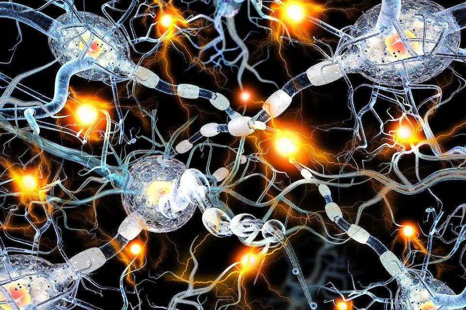Représentation artistique des neurones dans le cerveau