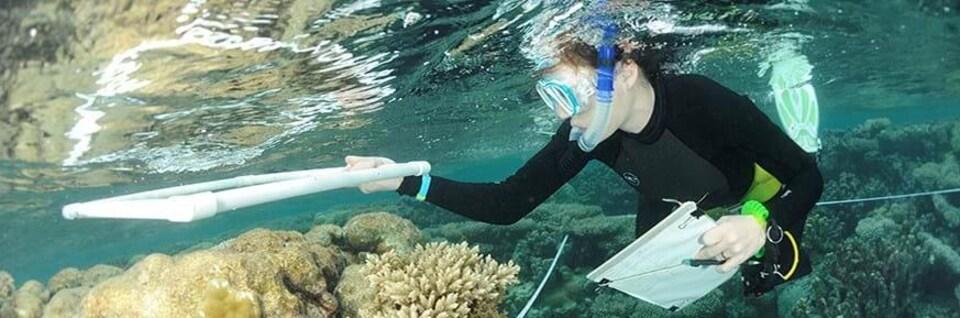 Une biologiste étudie un récif corallien dans l'archipel des Chagos.