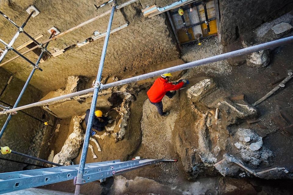 Il s'agit de l'une des découvertes les plus importantes à Pompéi, détruite par l'éruption du Vésuve en l'an 79.