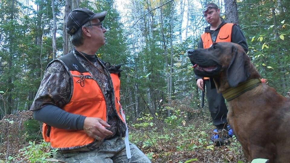 Un conducteur et son chien de sang dans la forêt