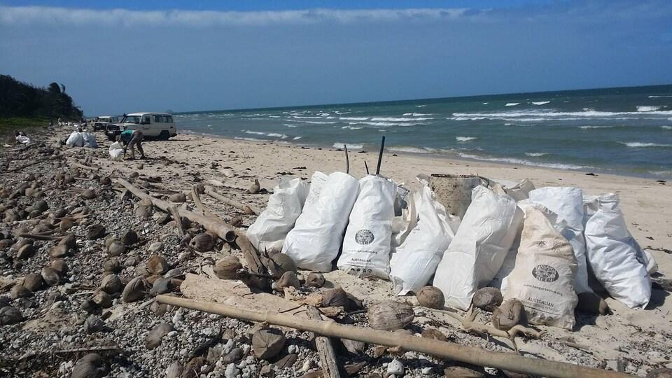 Paysage idyllique au bord de l'océan, une plage avec un peu de roches, des noix de coco, puis du sable blanc. De gros sacs blancs qui ont servi à recueillir des déchets sont déposés sur le sable. Au loin, des bénévoles participent à l'opération de nettoyage et des voitures sont stationnées sur la plage.