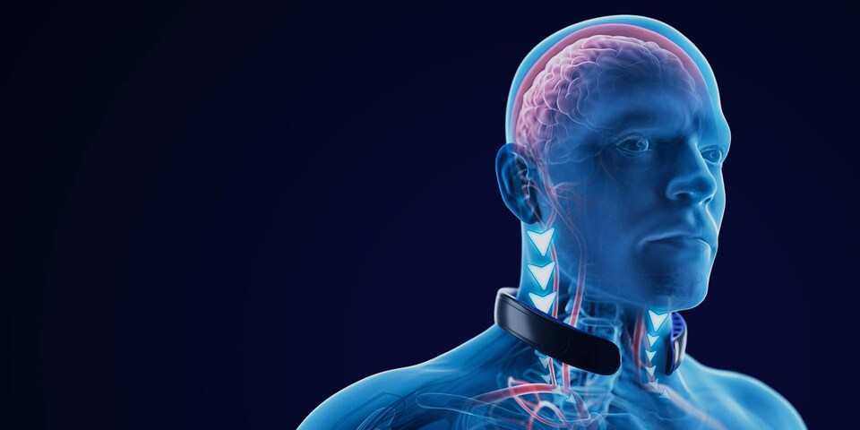 Le collier Neuroshield de Bauer
