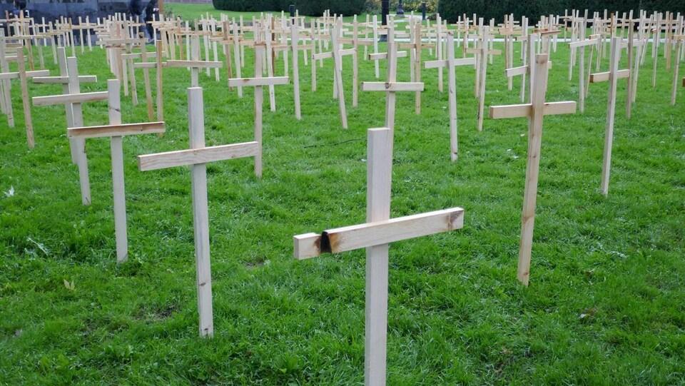 Photo de dizaines de croix blanches en bois plantées dans le gazon