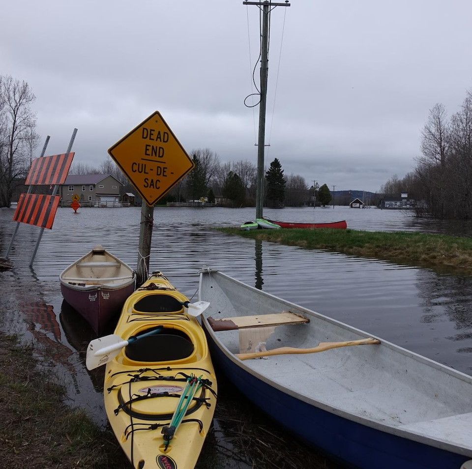 Les résidents de l'île Darlings doivent se déplacer en bateau. Des dizaines de canoës et de kayaks sont stationnés le long de la berge, près de la route.