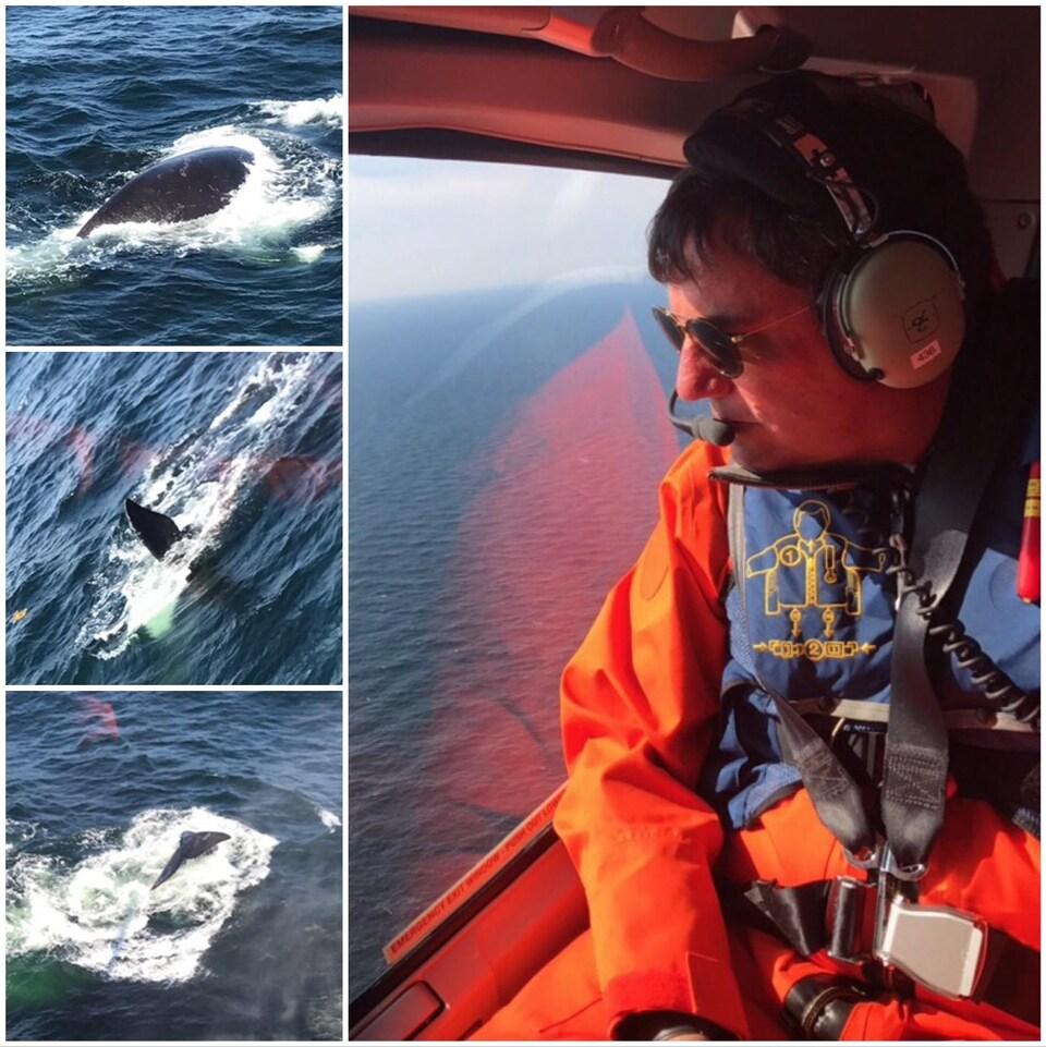 Le ministre Dominic LeBlanc a survolé une partie du golfe du Saint-Laurent pour observer les baleines noires et faire un était de la situation, jeudi matin.