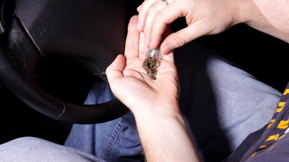 Un conducteur automobile se prépare un joint de cannabis.