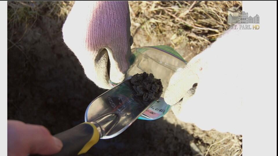 Des bénévoles prélèvent des échantillons de sol près de Dryden.