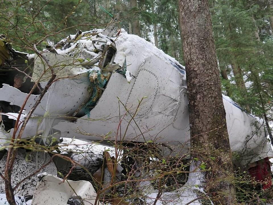 Une partie du fuselage de l'avion-cargo qui s'est écrasé en montagne au nord de Vancouver en 2015 repose contre un arbre dans une forêt enneigée