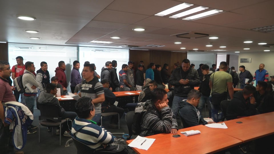 On voit des hommes qui font la file, debout, dans les bureaux du gouvernement mexicain.