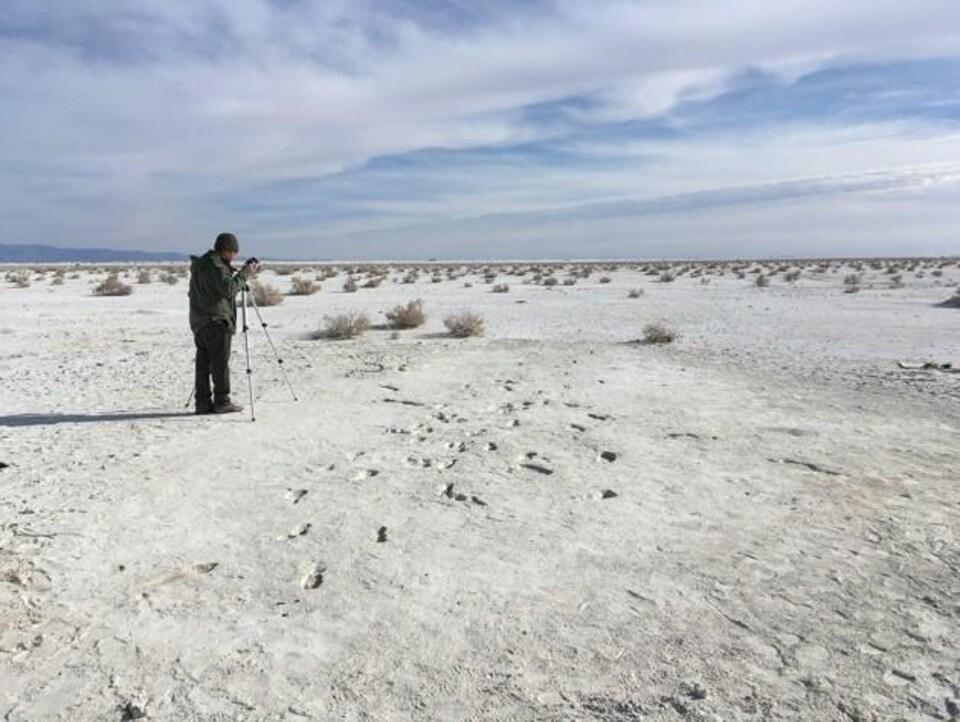 Les empreintes découvertes au Nouveau-Mexique.
