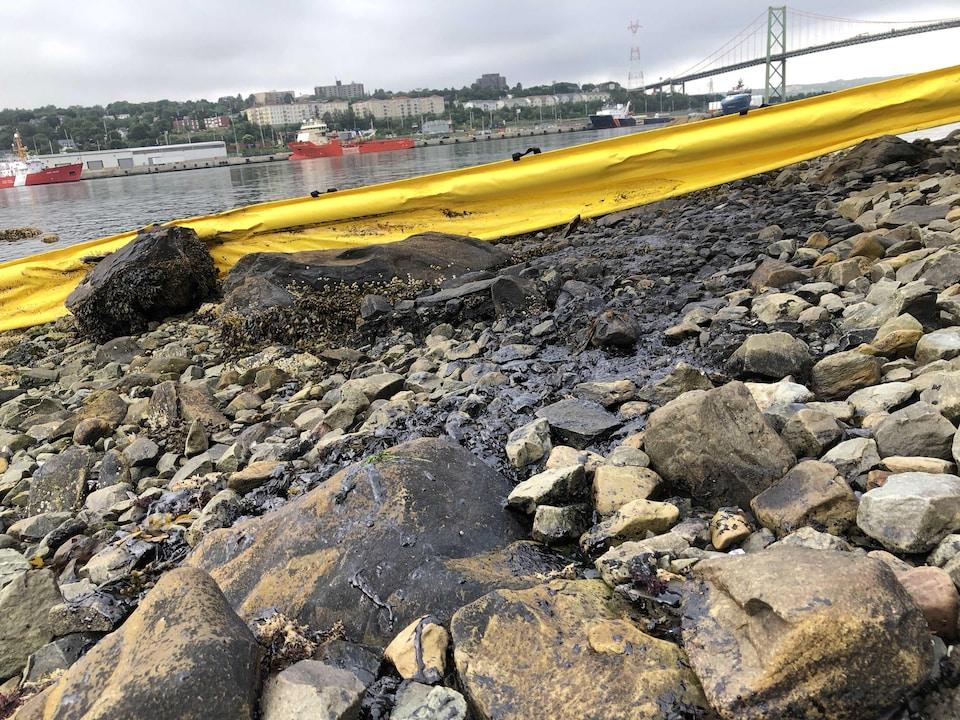 Estacade jaune près de l'eau dans le port d'Halifax le matin du 3 août 2018.