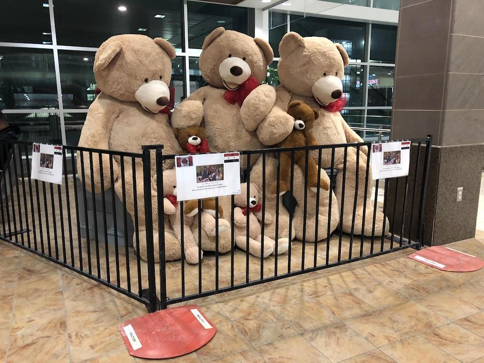 Plusieurs ours en peluche sont exposés avec des photos de la famille Barho.
