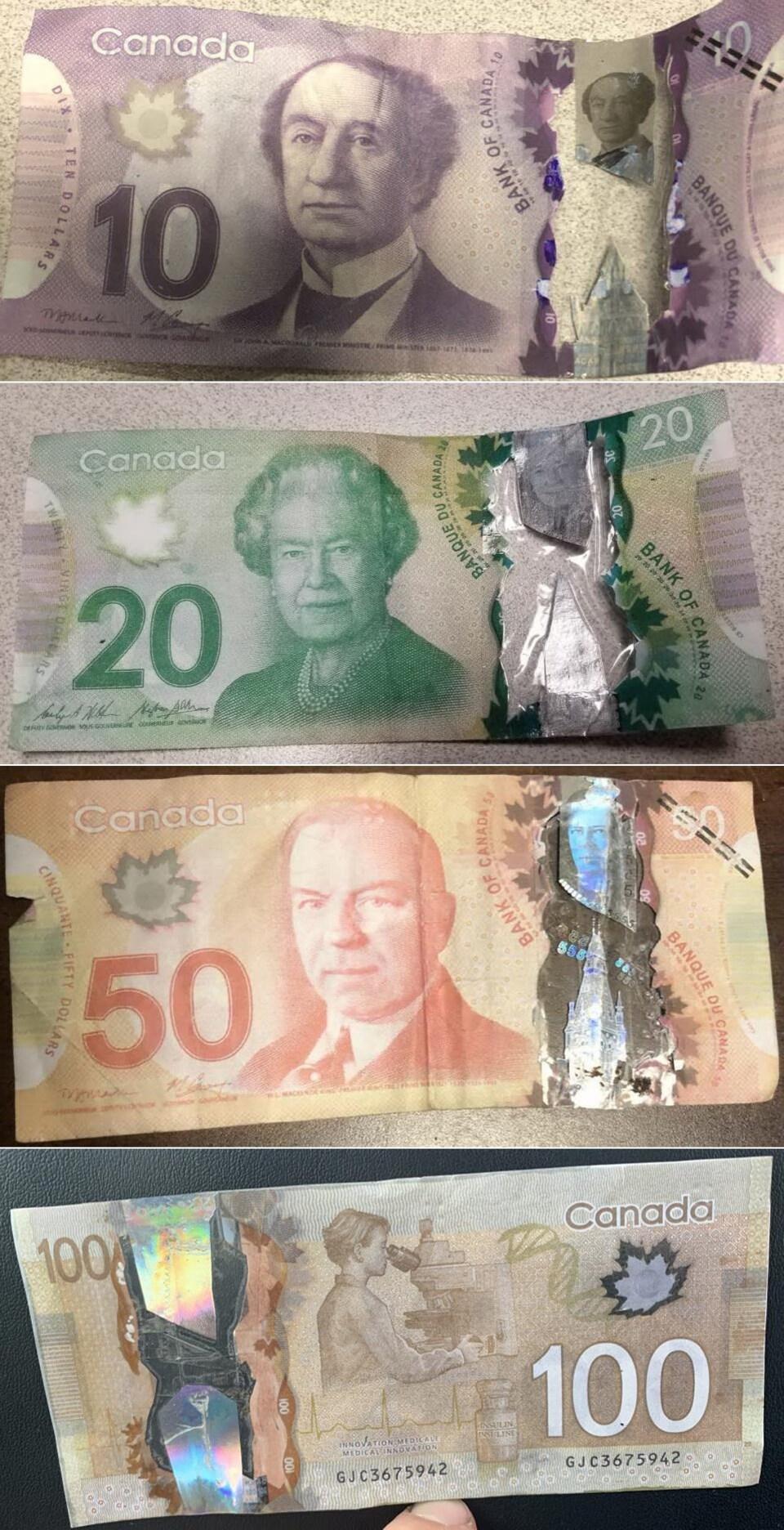 Des faux billets de 10 $, 20 $, 50 $ et 100 $.