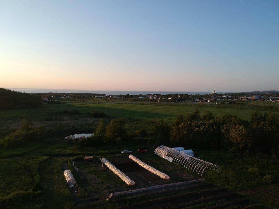 Vue sur la ferme du Castor gras et la ville de Trois-Pistoles
