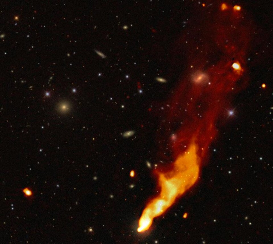 Galaxie abritant un noyau actif en son centre.