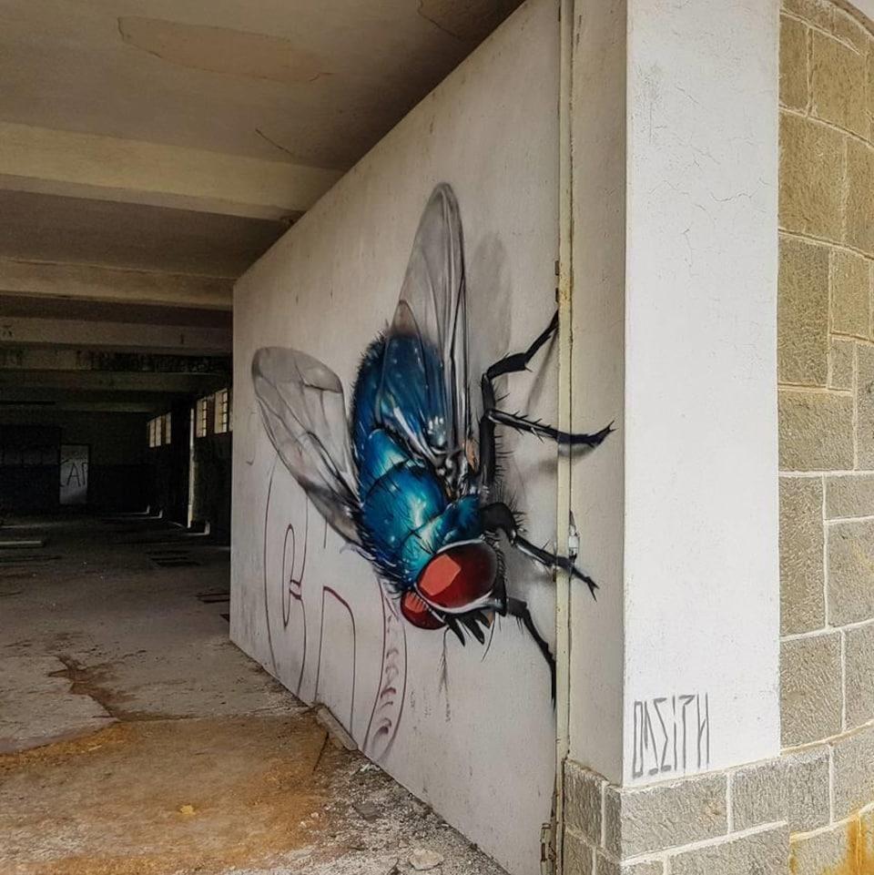 Une mouche peinte par l'artiste odeith.