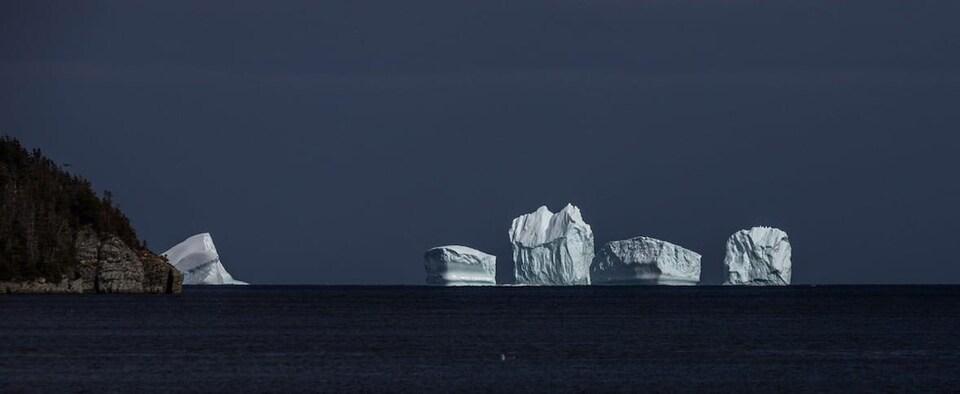 Cinq icebergs près de la côte par temps couvert