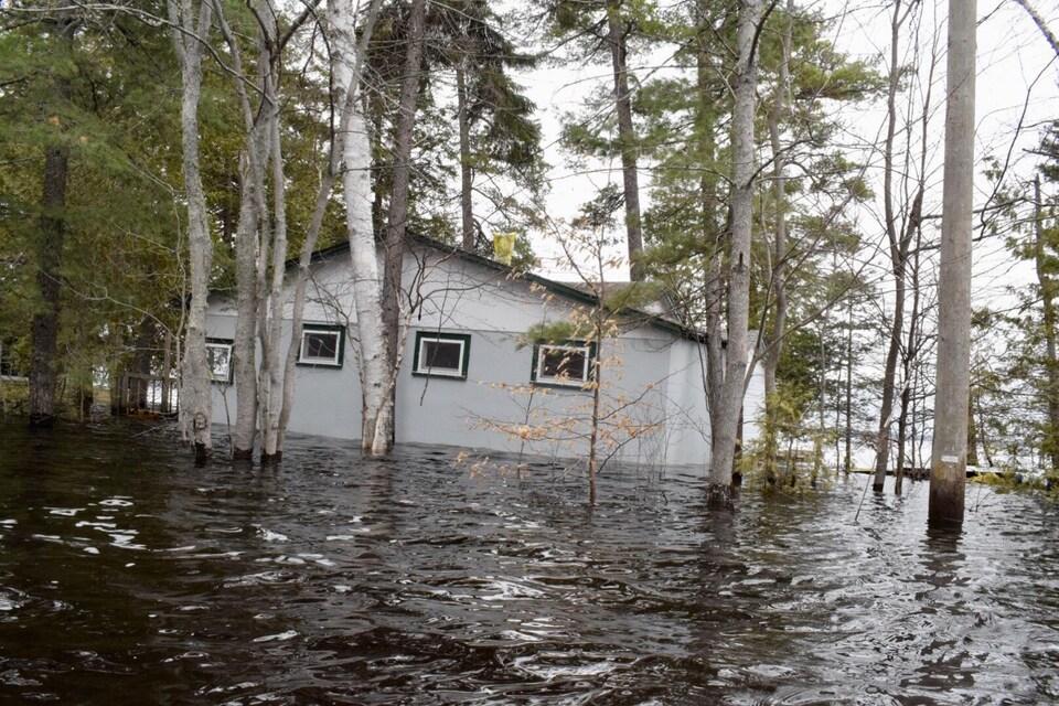 Chalet inondé retenu par les arbres à Princess Park, dans la région de Grand Lake au Nouveau-Brunswick, le 28 avril 2019.