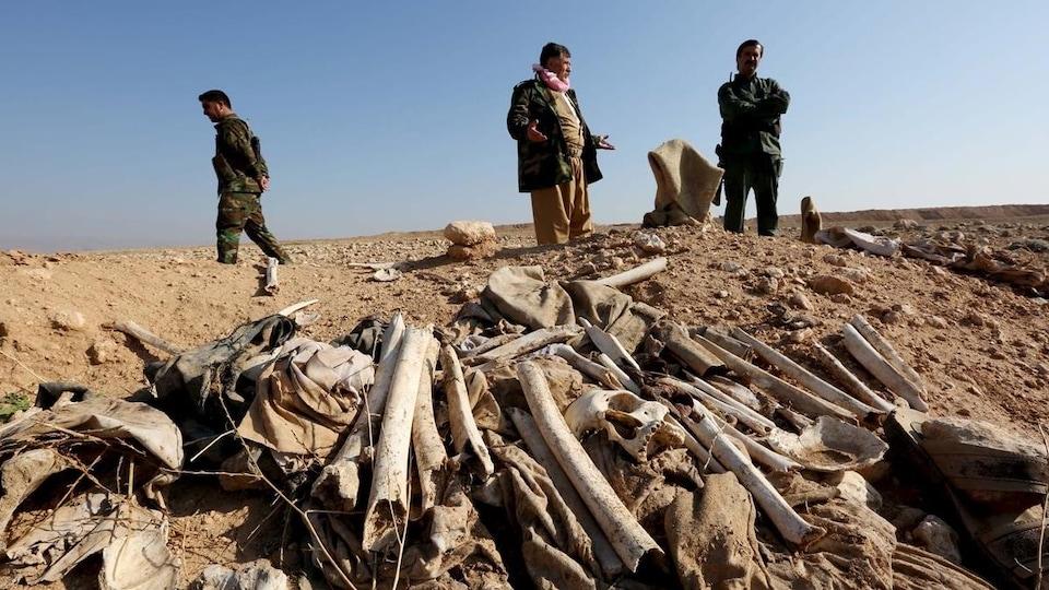 Des ossements jonchent le sol du désert irakien.