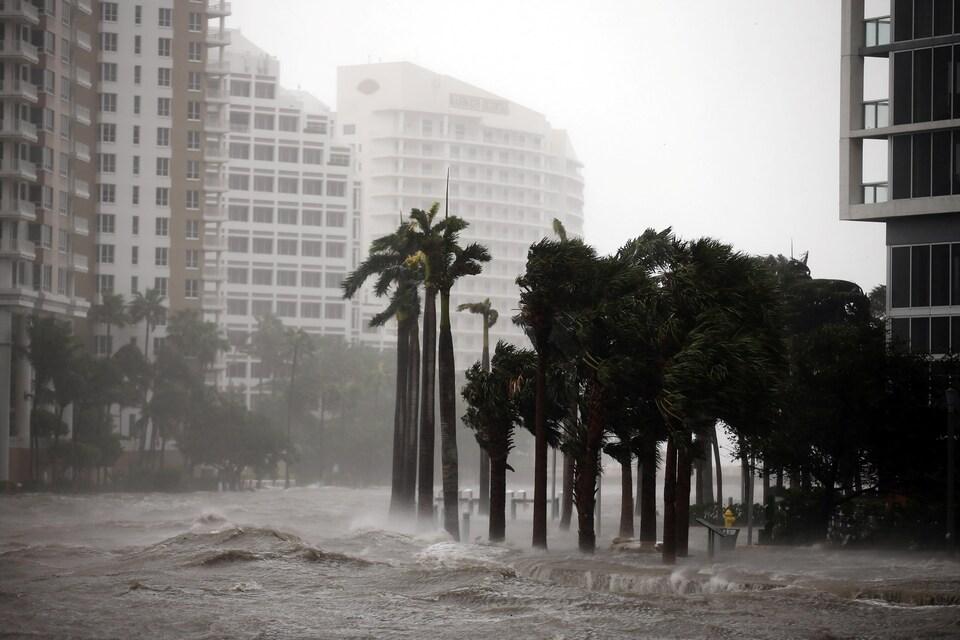 Le niveau des eaux monte à Miami.