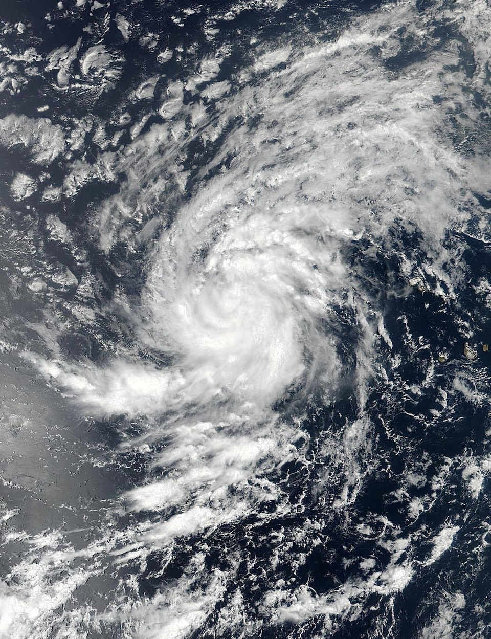 Une image satellite de la tempête Irma.