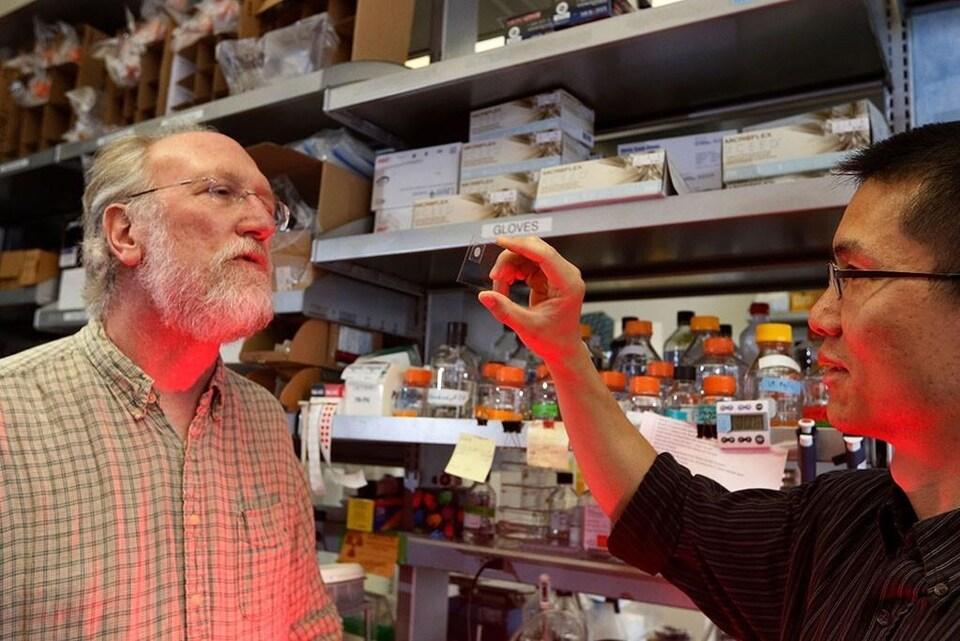 Le chercheur Xianrui Cheng montre à son collègue James Ferrell une lame contenant un ovule de grenouille.