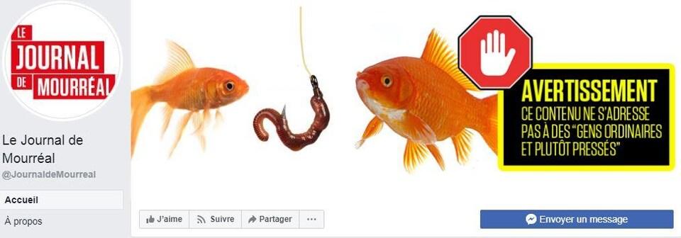Deux poissons devant un hameçon.