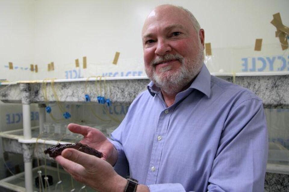 Le chercheur David Glanzman et l'une des limaces participantes à l'étude.