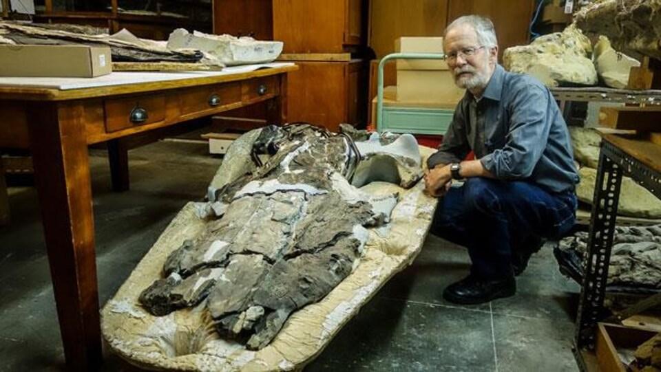 Le Pr Ewan Fordyce et le crâne d'un Llanocetus denticrenatus