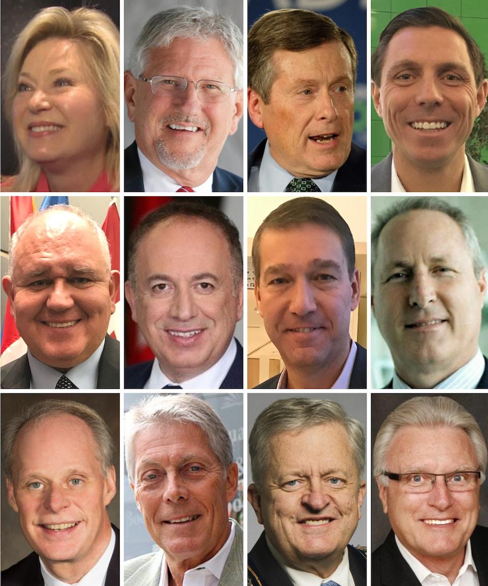 Photo des 12 maires dans une mosaïque