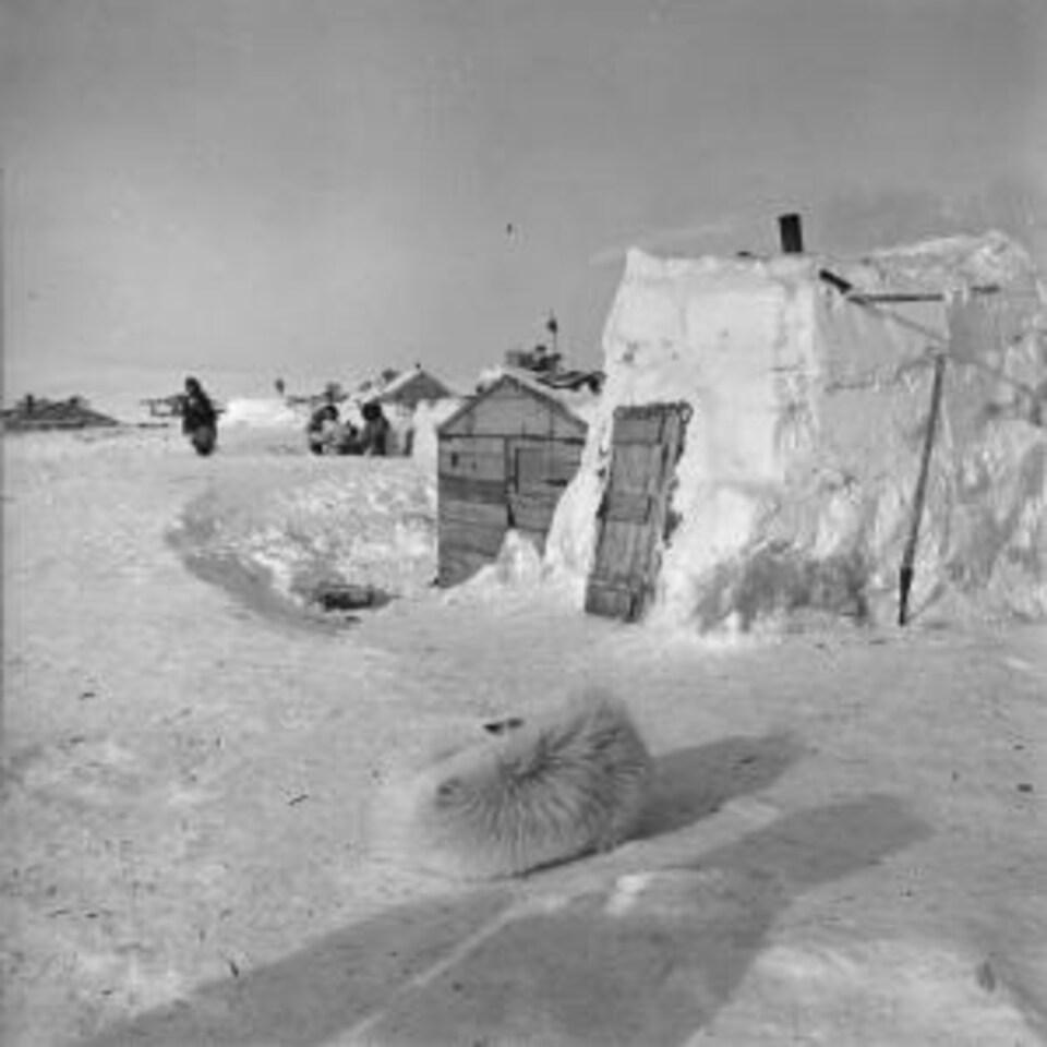 Une image d'archive montrant des maisons semblables à des igloos et donc recouvertes de neige, dans le Grand Nord en 1956