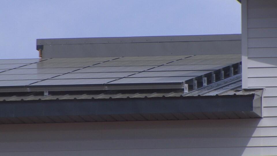 Une toiture tapissée de panneaux solaires