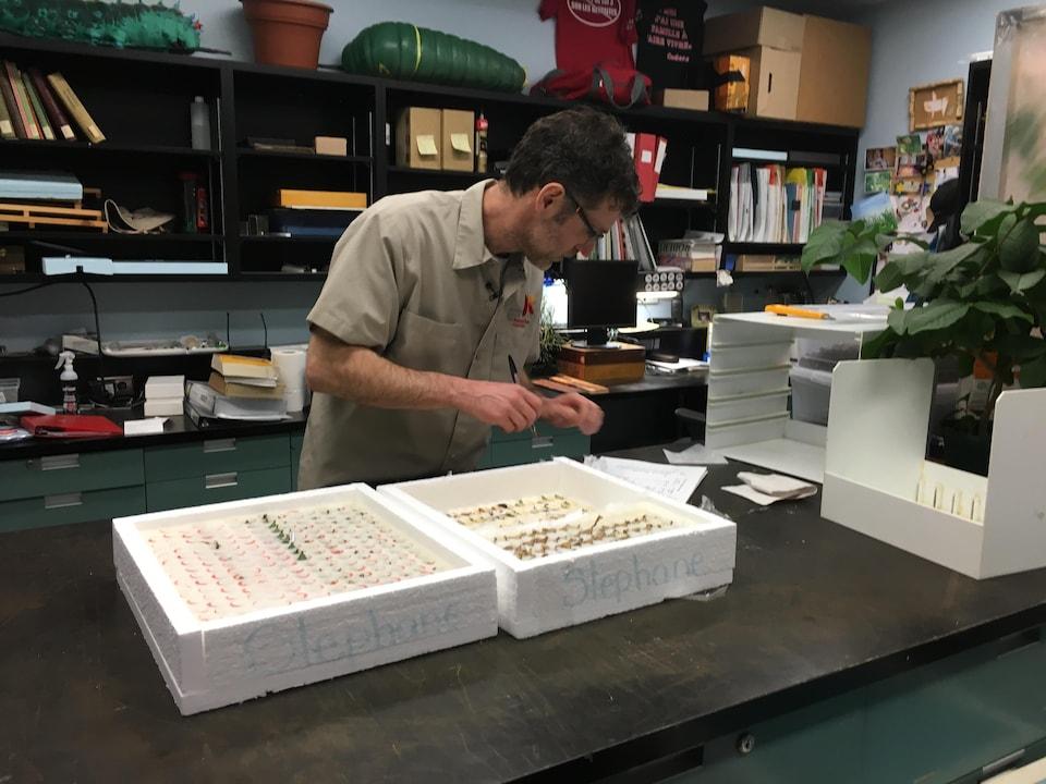 Mario Bonneau avec des boîtes de chrysalides