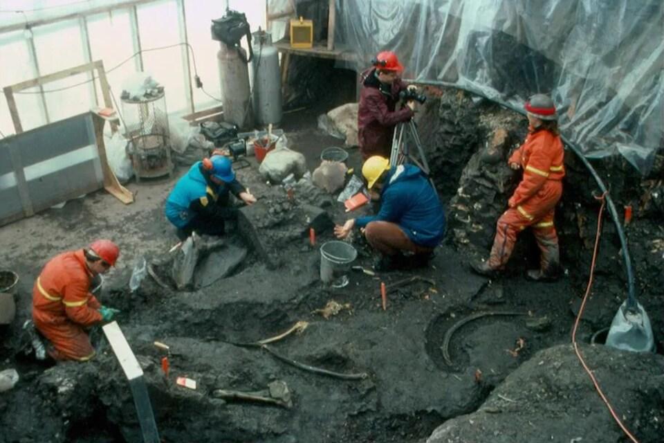 Cinq scientifiques extraient des ossements du sol.