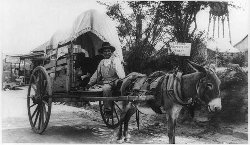 Un Mexicain sur une charrette tirée par un âne