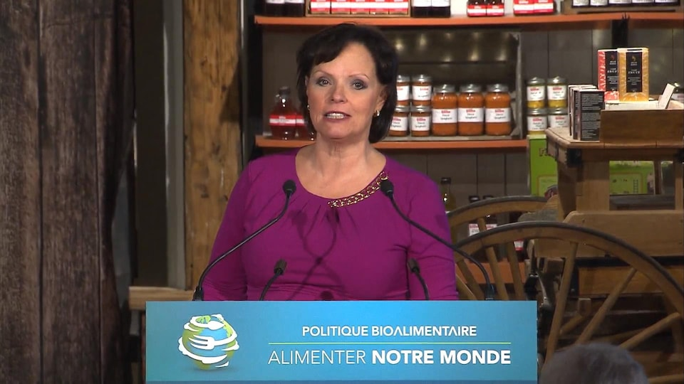 La ministre déléguée à la Réadaptation, à la Protection de la jeunesse, à la Santé publique et aux Saines habitudes de vie, Lucie Charlebois.