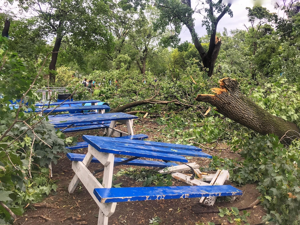Un parc de Côte-des-Neiges–Notre-Dame-de-Grâce frappé de plein fouet par les  orages violents