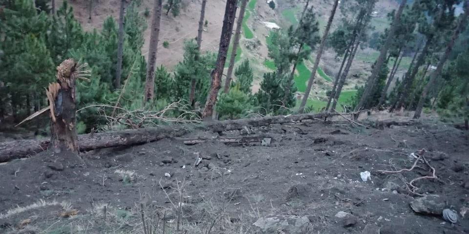 Un zone rasée dans une forêt.