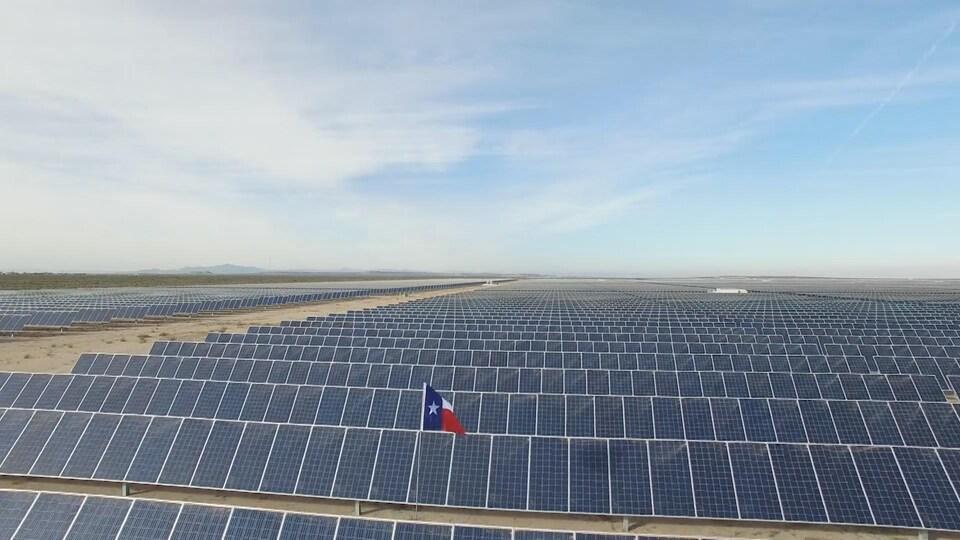 Des panneaux solaires à perte de vue.