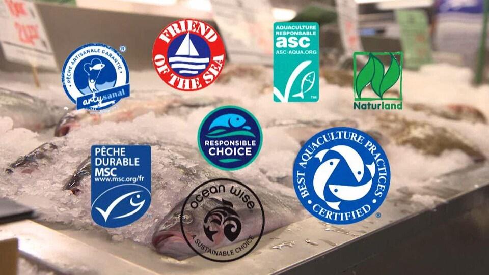 Parmi les logos, on trouve le Friends of the Sea, Ocean Wise et Naturland.